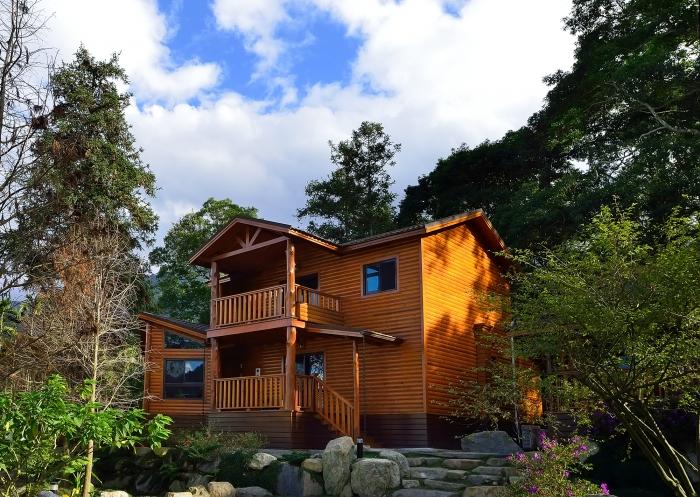 杉木林中的小木屋
